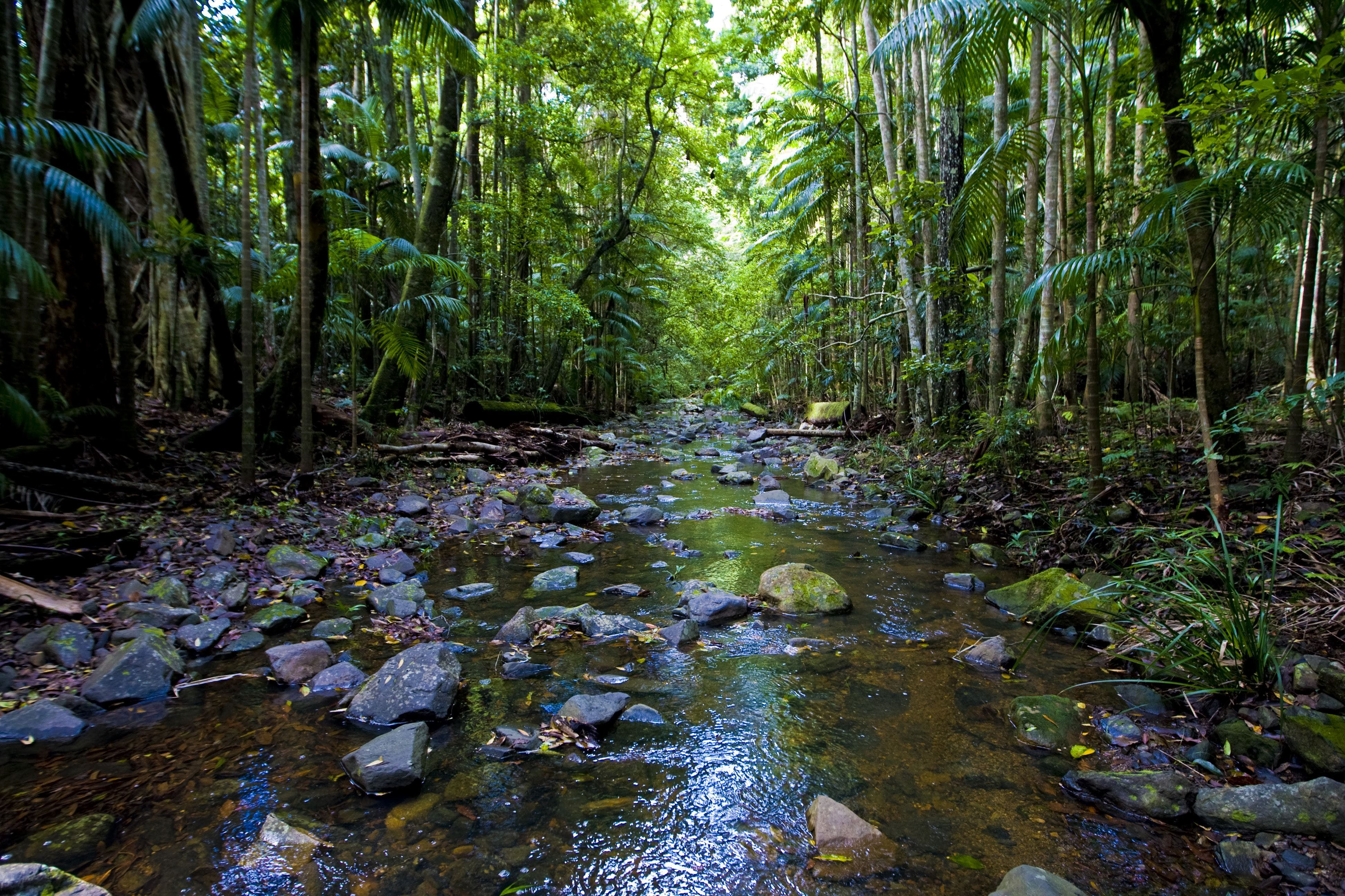 Nambucca Valley - Townsville Tourism