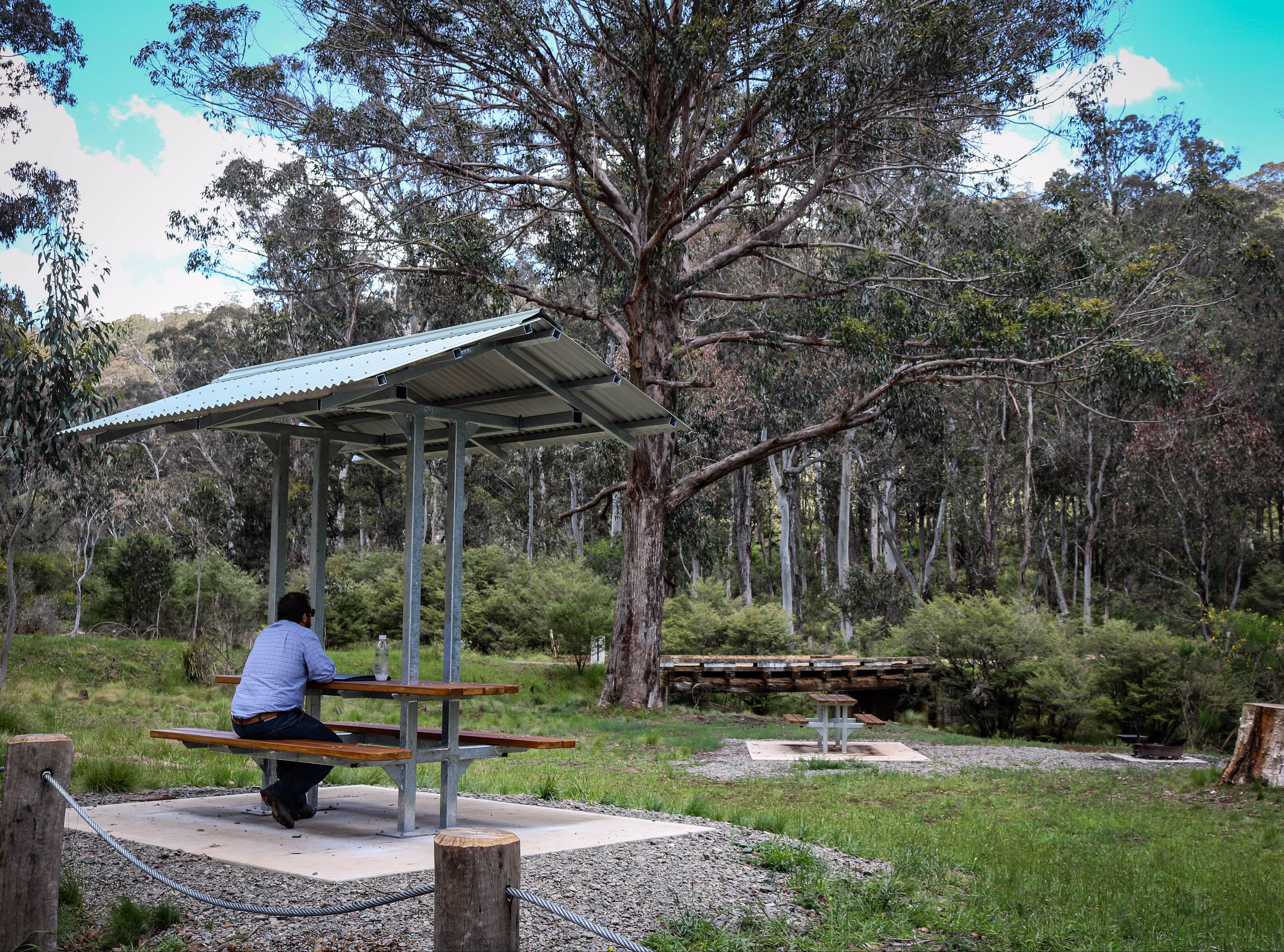 Barrington Tops State Forest - Townsville Tourism