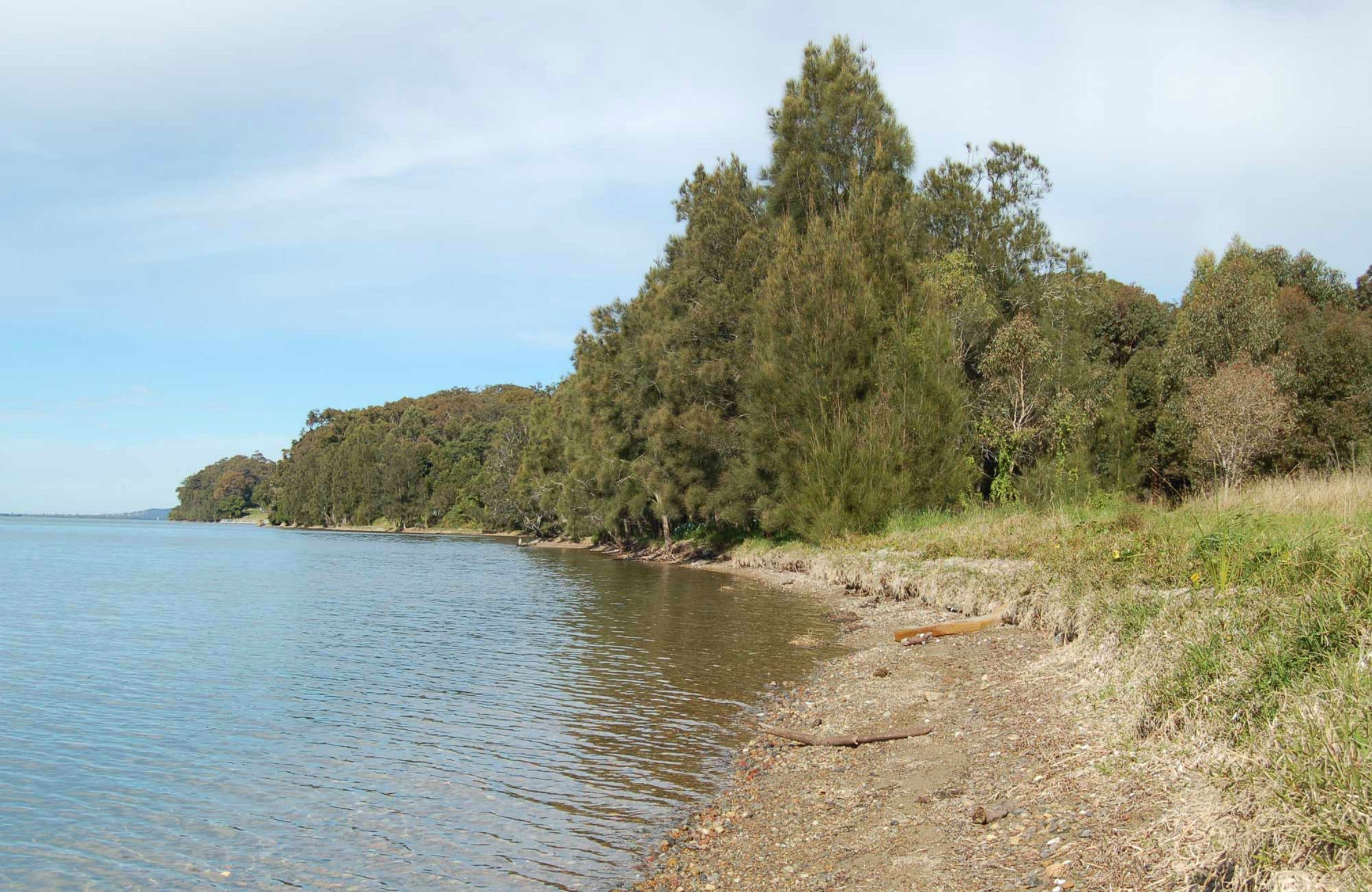 Lake Macquarie State Conservation Area - Townsville Tourism