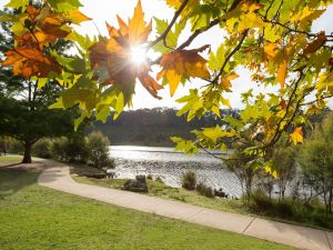 Wentworth Falls Lake - Townsville Tourism