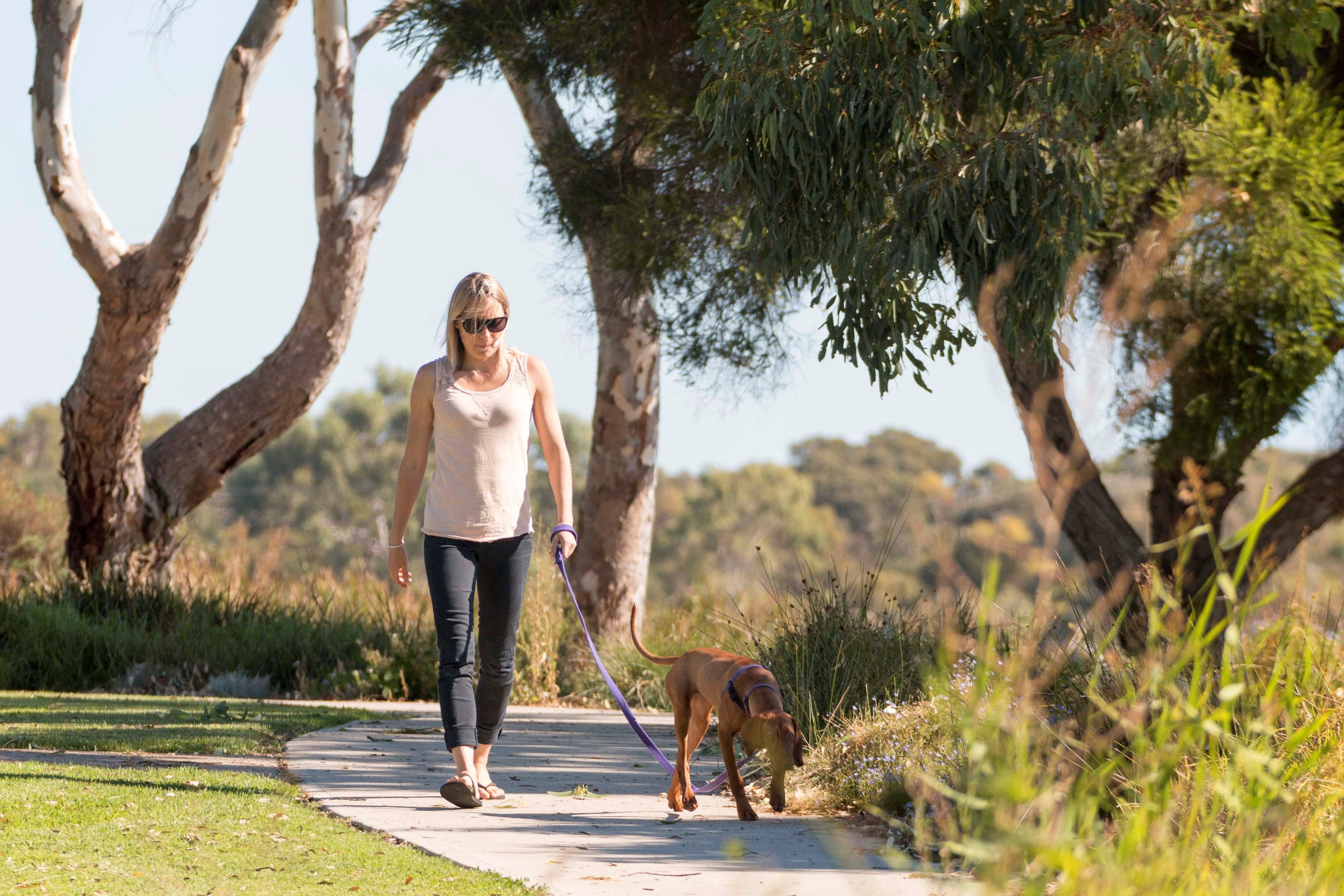Meningie Walking and Cycling Trails - Townsville Tourism