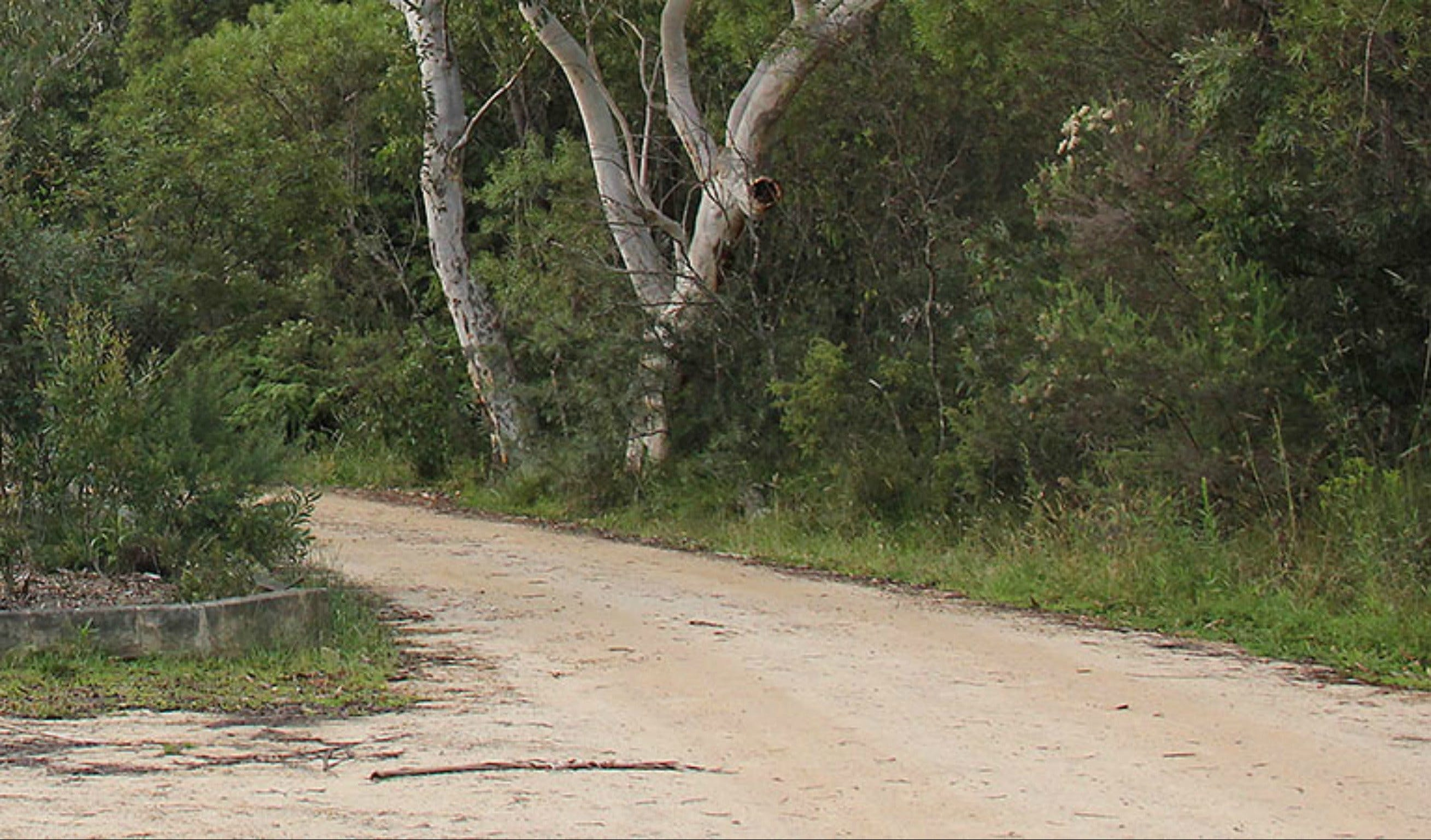 Riverview walking track - Townsville Tourism