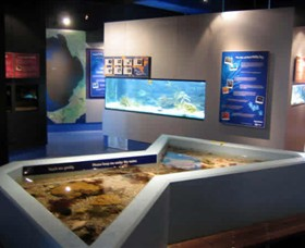 Marine and Freshwater Discovery Centre - Townsville Tourism