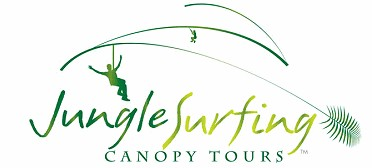 Jungle Surfing Canopy Tours and Jungle Adventures Nightwalks - Townsville Tourism