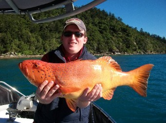 Gone Fishing by Coral Sea Fishing Charters Airlie Beach - Townsville Tourism