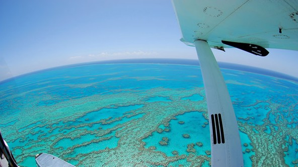 Air Whitsunday Day Tours - Townsville Tourism