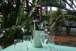 Ellis Beach Bar & Grill