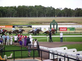 Pinjarra Race Club - Townsville Tourism
