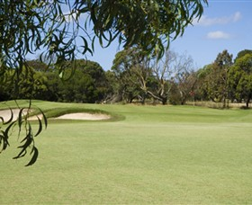 Curlewis Golf Club - Townsville Tourism