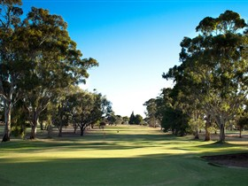 Loxton Golf Club - Townsville Tourism