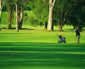 Foster Golf Club - Townsville Tourism