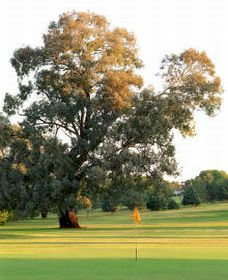 Cowra Golf Club - Townsville Tourism