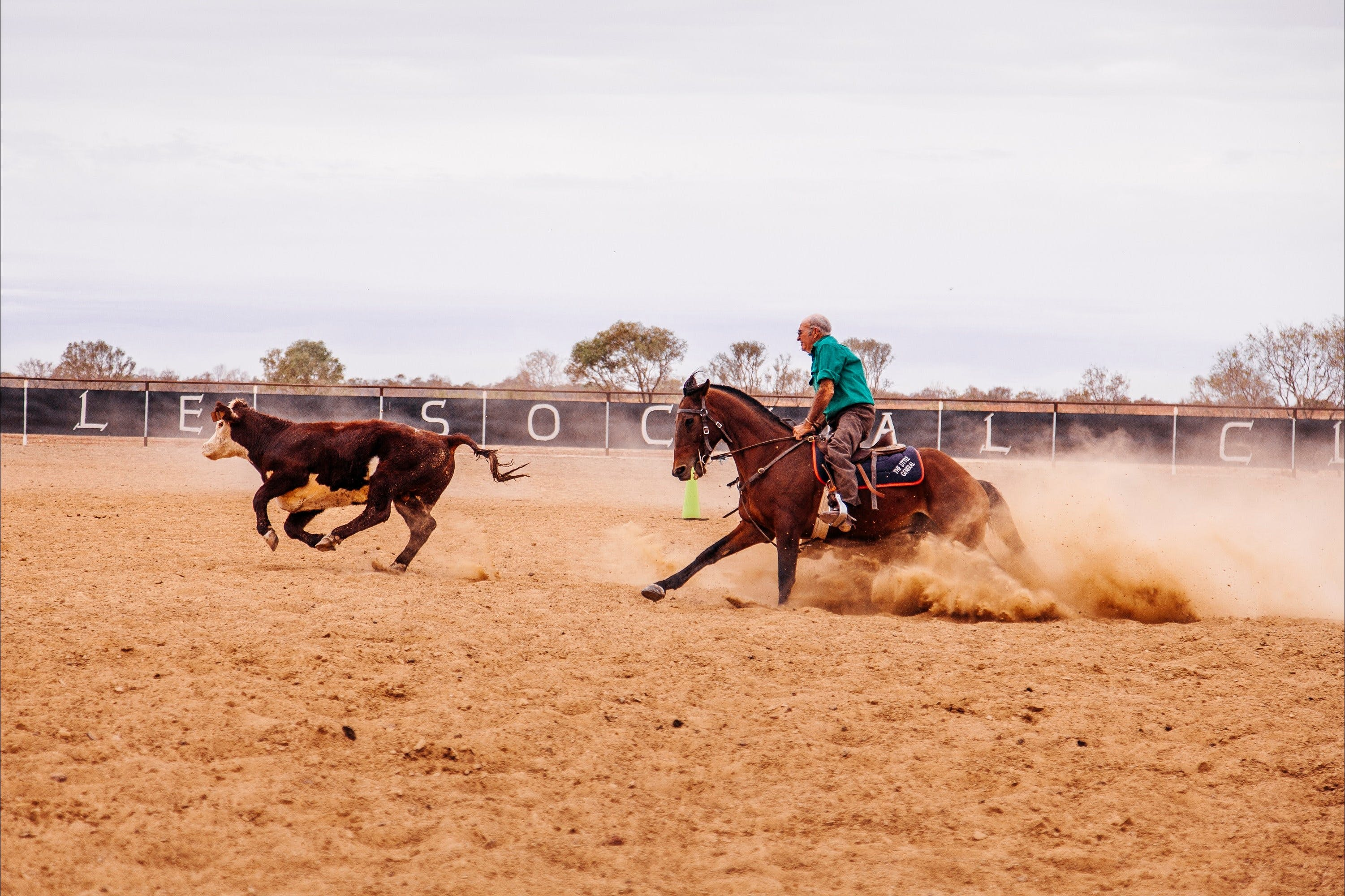 Birdsville Campdraft  Rodeo and Bronco Branding - Townsville Tourism