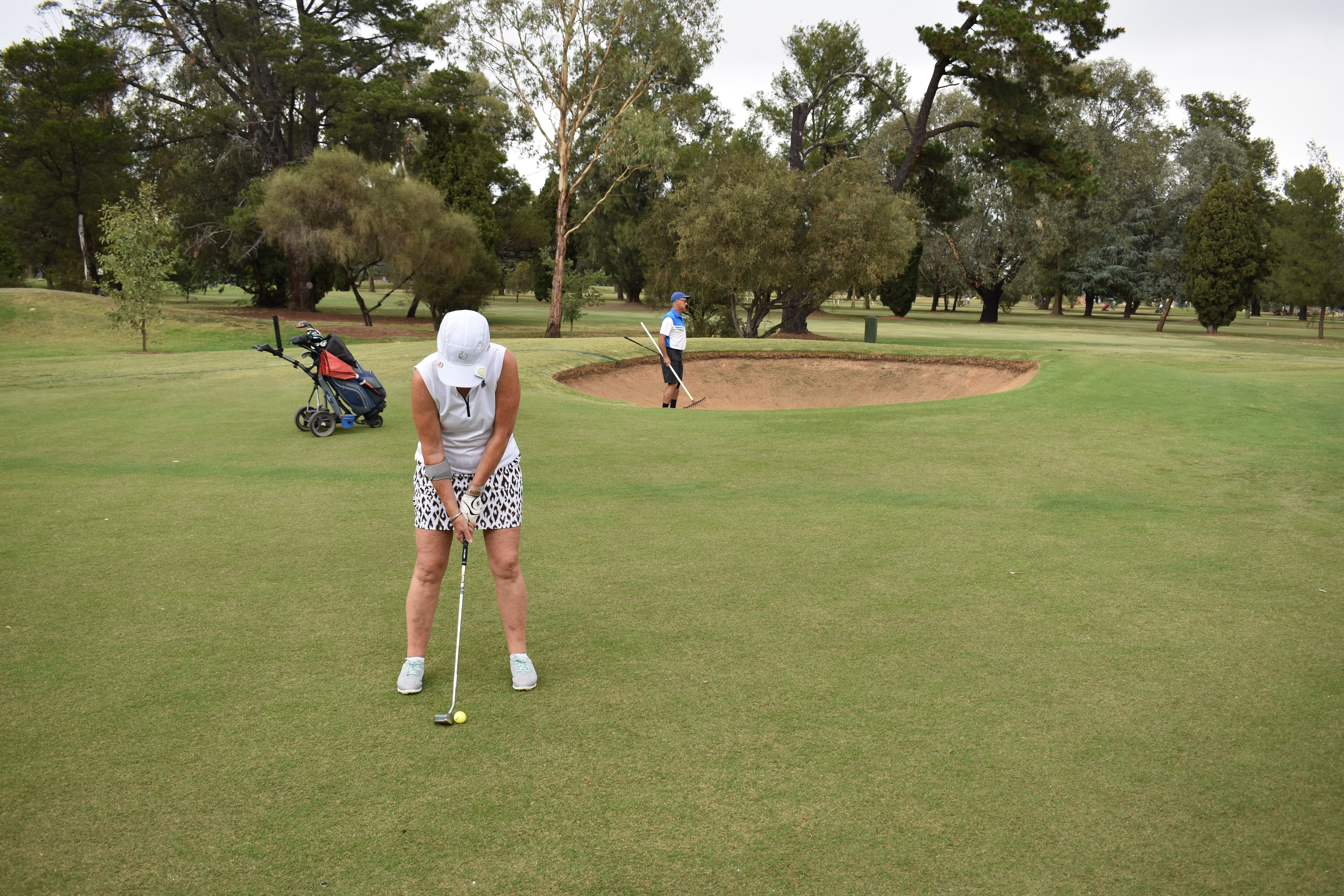 Howlong Golden Shoe Nine Hole Golf Tournament - Townsville Tourism