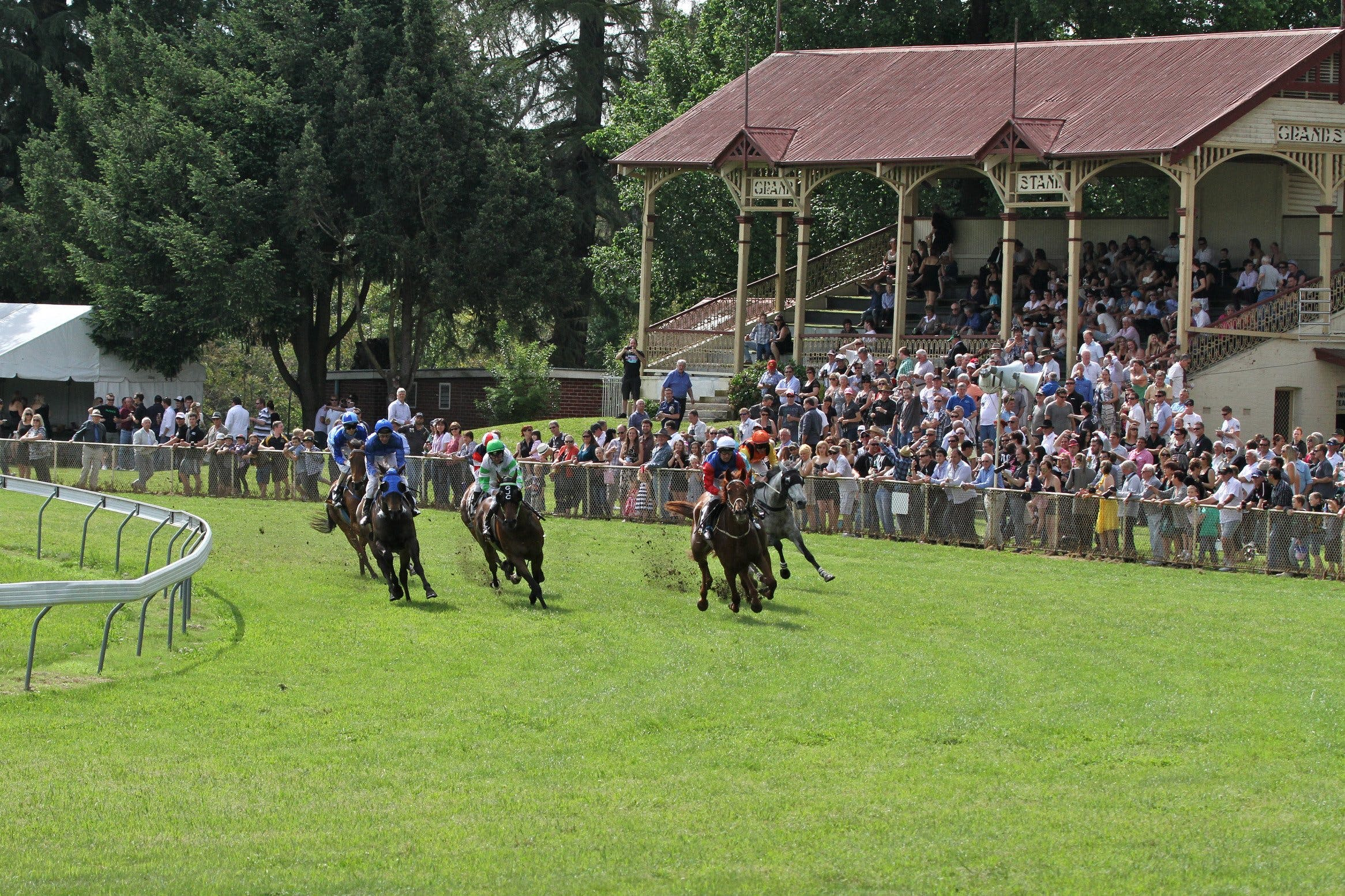 Tumut Derby Day - Townsville Tourism
