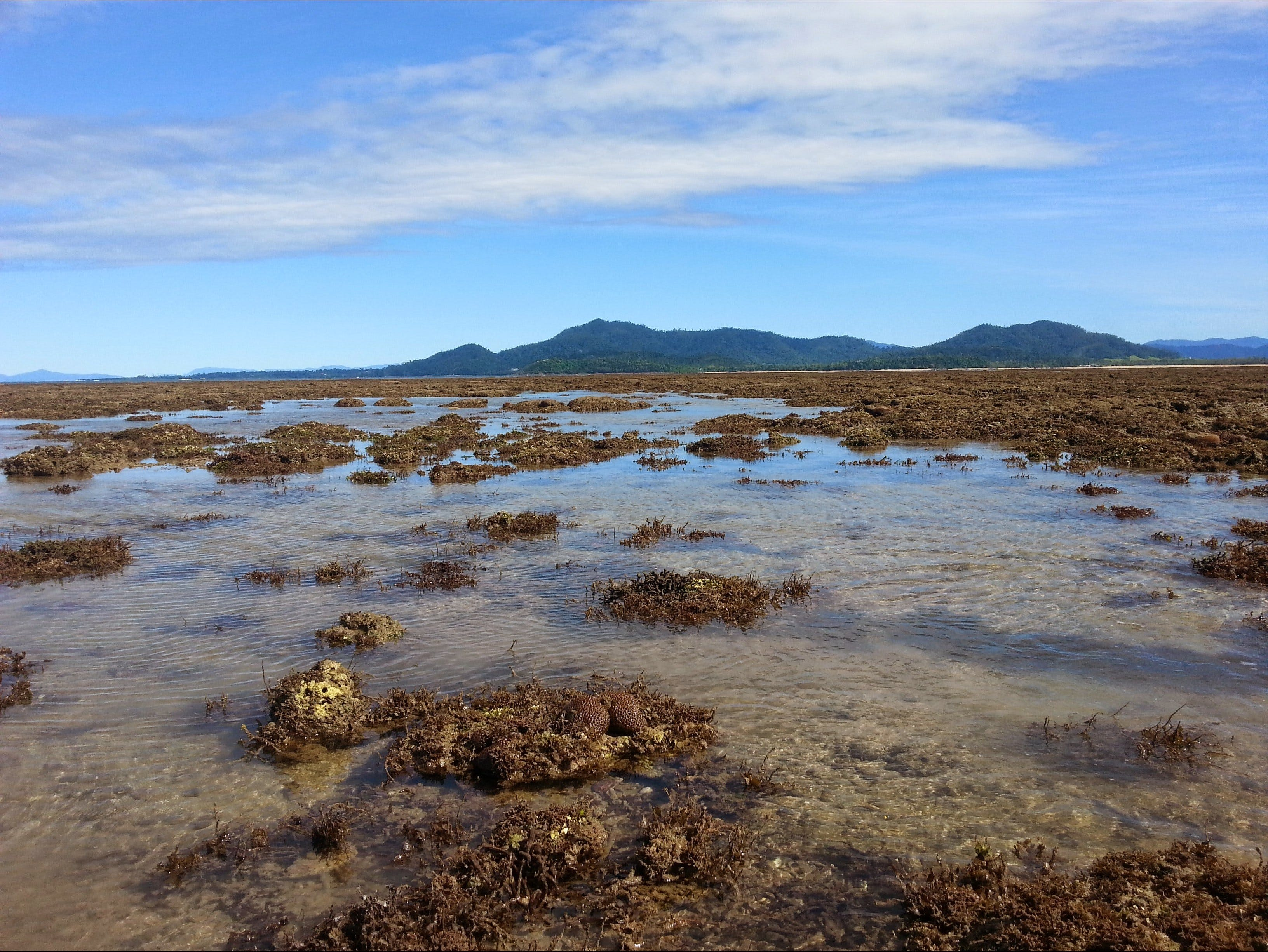 Walk to the Reef - Townsville Tourism