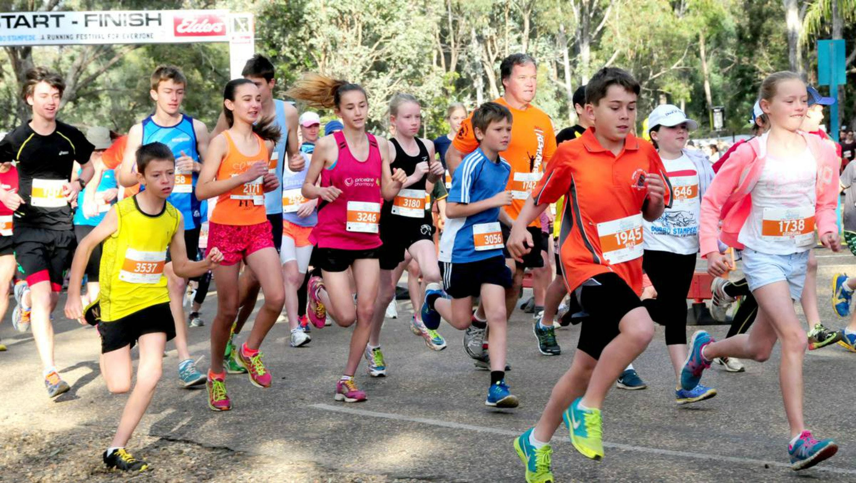 MAAS Group Dubbo Stampede Running Festival - Townsville Tourism