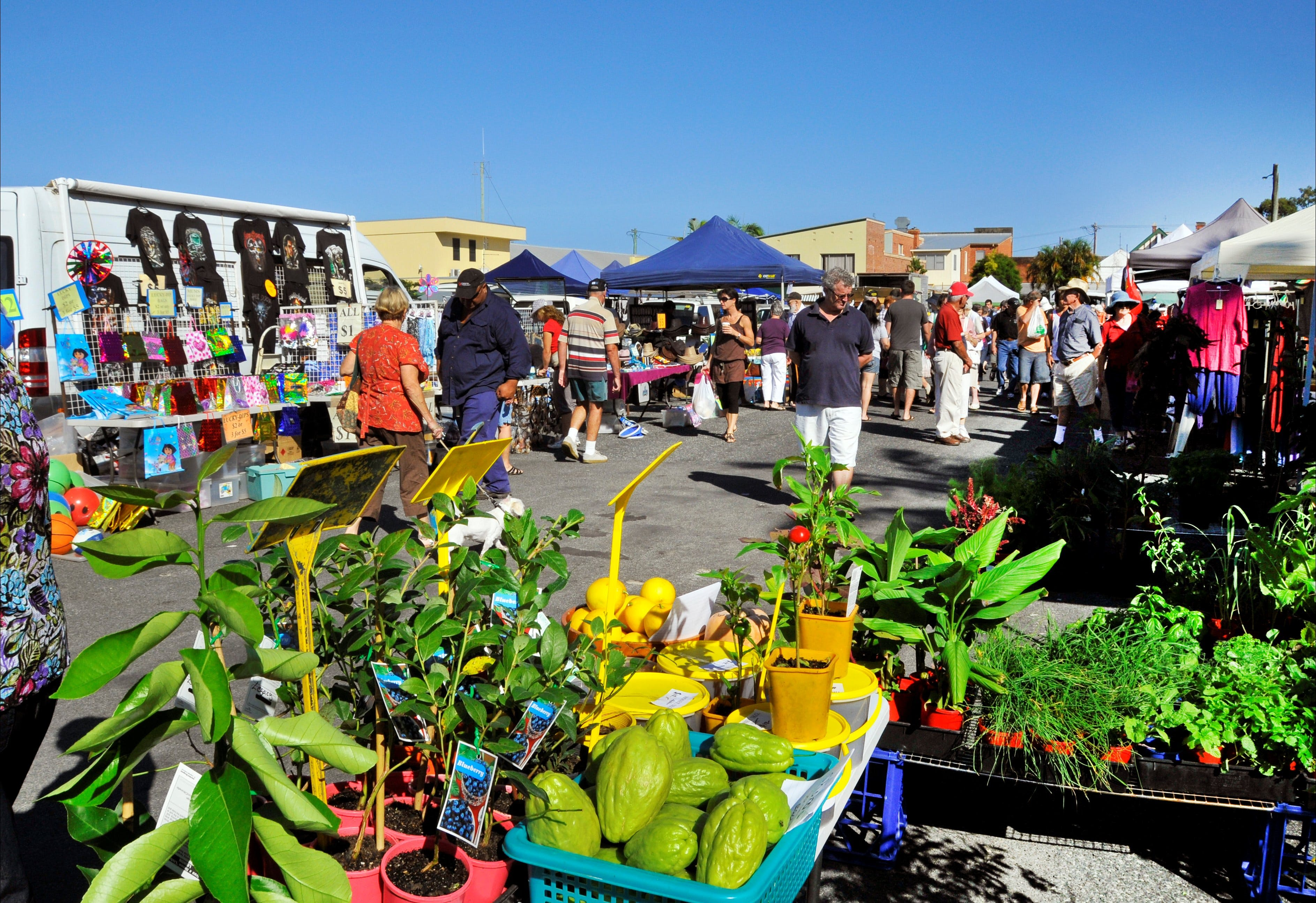 Maclean Macmarket Day - Townsville Tourism