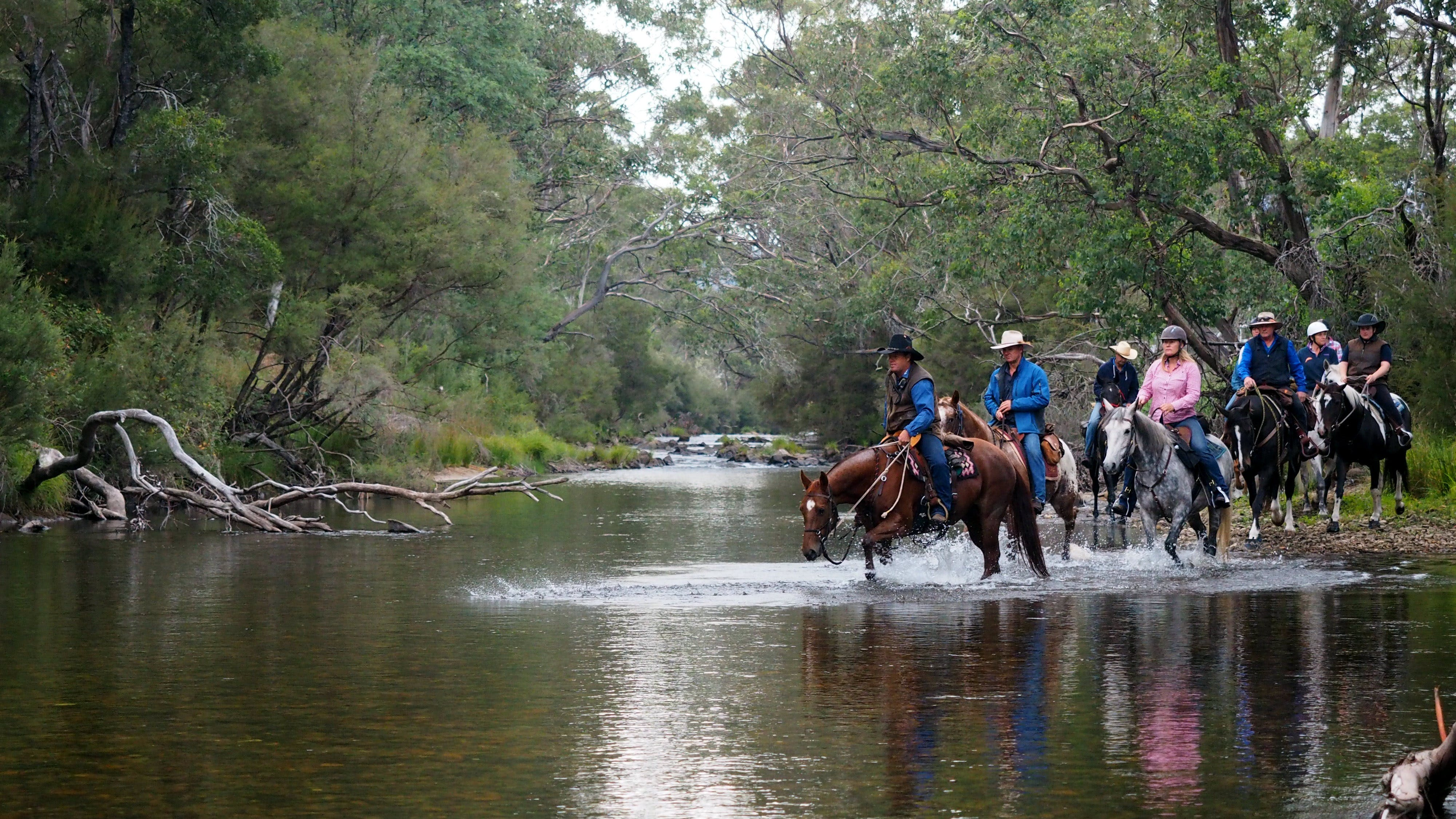 The Man From Snowy River Bush Festival - Townsville Tourism