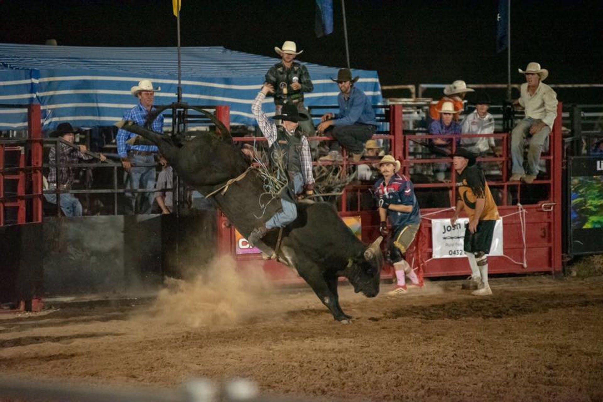 Black Opal Bull and Bronc Ride - Townsville Tourism