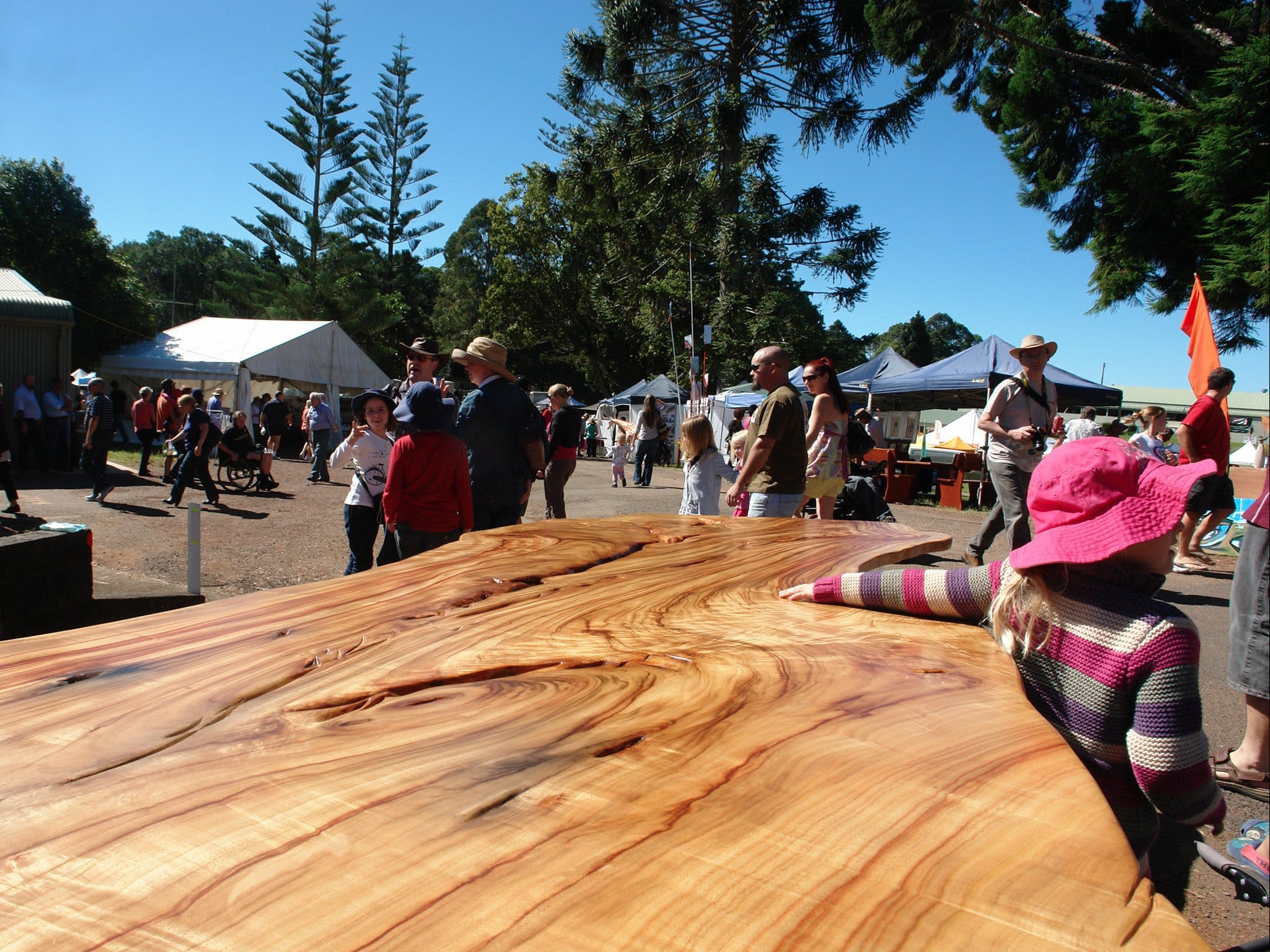 Maleny Wood Expo From Seed to Fine Furniture - Townsville Tourism