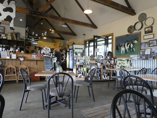 Holy Cow Cafe - Townsville Tourism