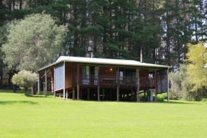 Hawke Brook Chalets - Townsville Tourism